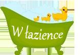 Blog o aranżacji łazienek